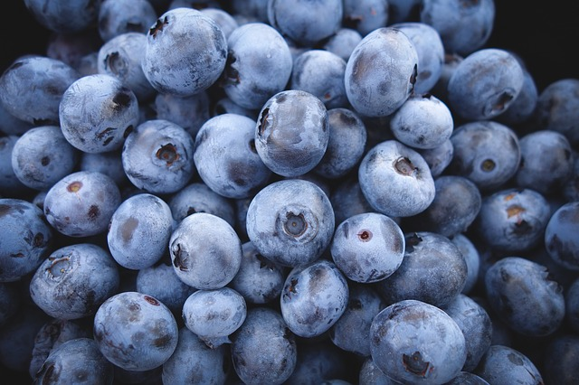 blueberries-frozen berry bites recipe
