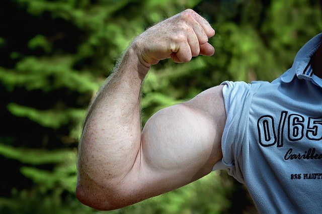 Visible muscle growth personal training